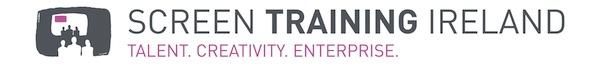 STI logo (print)